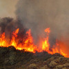 Firefighters Respond To Brush Fire Near Castaic Lake