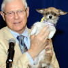 Antonovich Pet of the Week (4-30-2013): Bella