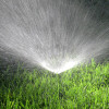 Aug. 19: CSUN-al Offering Class on Water-Saving Methods for Home and Garden