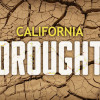 SCV Businesses React to Ongoing Drought Conditions