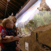Remodeled Nature Center Museum Opens at Placerita