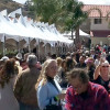 Wine Festival Celebrates Area Growers