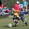 Fall Registration Open for FC Youth Soccer League