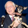 Antonovich Pet of the Week (2-10-2016): Henry