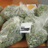 Man Caught with 7 Pounds of Pot at Castaic Lake