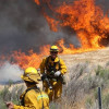 Half-Acre Brush Fire Reported in Agua Dulce