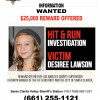 City Offers $5,000 Reward for Arrest of Person Involved in Hit-and-Run