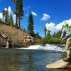 Chasing Western Trout with the Western Native Trout Initiative