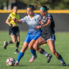 Santa Clarita Blue Heat Wins Home Opener 1-0