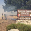 Oak of Golden Dream Saved from Fire; Park Entrance Scorched