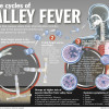 Valley Fever Cases Up 37 Percent in L.A. County