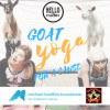 June 1: Goat Yoga for a Cause