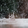 January Storms Ease California Drought