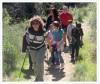 County to Restore Habitat, Create 'Braille Trail' at Placerita Park