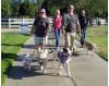Oct. 20: ACS 'Bark for Life' Returns