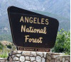 Squirrel Found with Plague; Campgrounds Near Wrightwood Closed