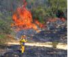 Fire Fighters Douse 7-Acre Blaze In Stevenson Ranch