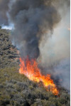 Fire Spreads to 1,500 Acres; 15% Contained (Video)