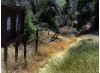County to Upgrade Walker Ranch Trailhead