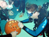 Oct. 22: 9th Annual Underwater Pumpkin Carving Contest