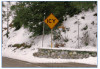 Certain Forest Roads Closing Sat. Due to Snow Forecast