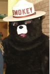 Forest Service Celebrates Smokey Bear's 75th Birthday, Mobile App Release