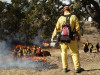 Fighting Fake Fire with Fire in Castaic