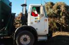 Celebrate an Eco-Friendly Holiday Season