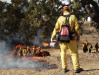 Firefighters Waiting for Right Conditions for Controlled Burns