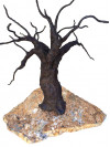 Tyzbir's Steel Oak on Display at Gallery in Mall; Reception Friday
