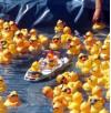 Dixon Centers Announce Duck Race Winners