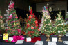 Nov. 16-19: Festival of Trees to Benefit SCV Boys & Girls Club