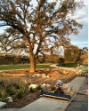 Park in Newhall Land's River Village Will Be City's 30th