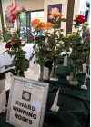"""Nov. 4: """"Wild West Roses"""" Theme at 24th Annual Rose Show"""
