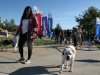 Hundreds Turn Out to Bark for Life in Valencia