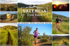 Off-Road Racers to Run at First Ever Valencia Trail Race