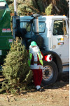 Santa Clarita City, Waste Management Offer Free Curbside Christmas Tree Recycling