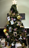 Gold Star Family Christmas Tree on Display at City Hall