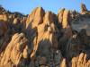 Plan a Jan. 1 Hike at Saddleback Butte, Red Rock