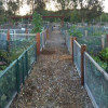 May 5: Community Garden of Santa Clarita's Farm-to-Table Kids Event