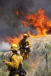 Half-Acre Brush Fire Reported in Agua Dulce