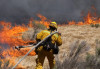 DUI Could be the Cause of Newhall Brush Fire