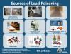 Public Should Take Precautions Against Lead Poisoning