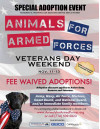 Veterans, Active Military Can Adopt a Pet for Free