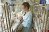 FDA Provides Advice on Using Hospital Crib