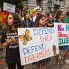 California AG Sues to Freeze Feds' DACA Phase-Out