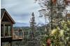 Animal Planet Reveals Princess Cruises Wilderness Treehouse in Season Finale