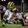 Photo Gallery: Hart Indians Beat Canyon Cowboys 35-18
