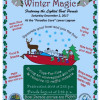 Dec. 2: Castaic Lake Winter Magic, Lighted Boat Parade