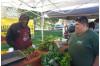 Tierra de Sol Farmers Market a Haven for Saturday Shoppers